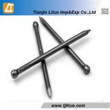 Ногти высокого качества и конкурентоспособной цены Polished общие