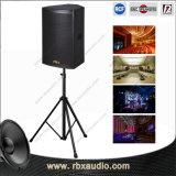 Audio sistema di PA QS-1540 dell'altoparlante esterno professionale del corno