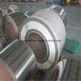 Roulis en acier de Staineless/prix raisonnable 317L de bobine