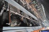De vlakke Materialen Sup9a van het Staal voor de Lente van het Blad van Aanhangwagens