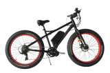 Тучный электрический Bike с СРЕДНИЙ мотором привода Jb-Tde00L