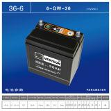 Mf 12V50ah de Batterij van de Auto