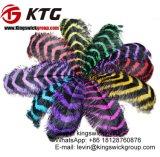 Penas coloridas 70-75cm da avestruz das cores da mistura da venda por atacado de Kingswick para a peça central dos partidos