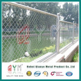 Покрынная PVC гальванизированная загородка звена цепи для загородки сада бейсбола