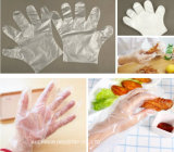 Qualität preiswerte PET Wegwerfmedizinische Plastikhandschuhe BBQ-Wegwerfhandschuhe