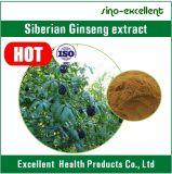 Poeder van het Uittreksel van de Ginsengen van het ISO- Certificaat het Siberische
