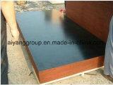 El negro/la película de Brown hizo frente a la madera contrachapada usada para los materiales concretos del encofrado/de construcción