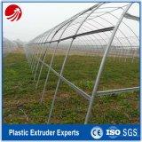 Le plastique de PVC a couvert la chaîne de production d'extrusion de pipe en acier