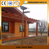 Luz de calle solar de la alta calidad con el panel solar (12W)