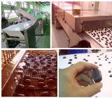 شوكولاطة يكسو آلة [شكلت] طلية ([تج300])