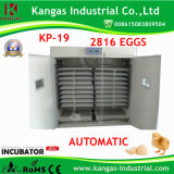 Machine automatique approuvée d'incubateur d'oeufs de poulet de la CE à vendre avec la bonne qualité (KP-19)