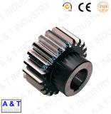 Engrenage circulaire de haute qualité et de haute qualité