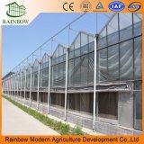 La venta caliente más barata y fácilmente instalado Multispan Jardín / Agricultura / Invernaderos de vidrio