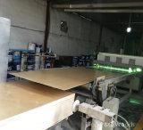 Panneau commercial/de fantaisie de placage d'usine de 4*8 Linyi de faisceau normal de peuplier de contre-plaqué