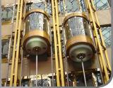 각종 수용량, 속도 및 디자인을%s 가진 중국 Fujizy 파노라마 상승 또는 파노라마 엘리베이터