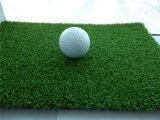Tappeto erboso sintetico di verde mettente (Zing CP)