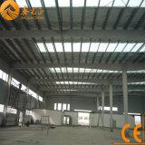 고품질 전 기술설계 강철 구조물 창고 (SSW-1007)