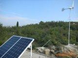Il vento sale sistema ibrido, generatore di vento solare, completi con i comitati solari, la turbina di vento, l'invertitore, le batterie, il collegare ecc ecc (1kw-20kw)