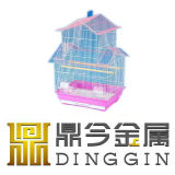 Entwurfs-Schicht-Vogel-Rahmen