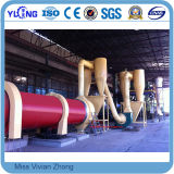 Wood Sawdust/Wood Straw/Palm Fiber/Biomss Dryer on Sale