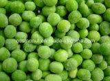 Vegetais misturados Frozen
