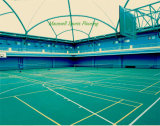 Новый напольный Badminton PVC 2017 резвится пол/пластичные половые коврики