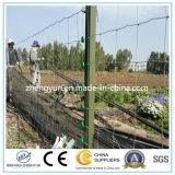 Ферма ограждая сетку/зафиксировала после того как она завязана ловящ сетью загородку поля