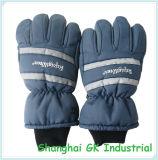 Guanti dell'isolante di sport di inverno dei guanti di inverno