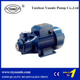0.5HP 각자 Priming Peripheral Water Pump (QB60)