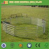 Ферма Австралии & Новой Зеландии использовала гальванизированную сваренную трубой загородку овец загородки лошади загородки скотин