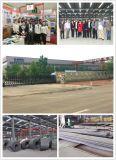 De professionele Workshop en het Pakhuis van de Structuur van het Staal van het Ontwerp Prefab