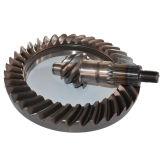 BS0190 6/37는 주문을 받아서 만들어진 트럭 Isuzu 기어 자동차 부속 후방 드라이브 차축 나선형 나선형 비스듬한 기어일 수 있다
