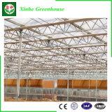 農業のためのMultispanの情報処理機能をもったガラス温室