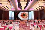 Afficheur LED professionnel d'intérieur de fournisseur de la Chine d'intense luminosité de P4s Skymax