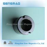 Ferrito Ring Magnet per Speaker Magnet