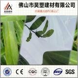 Fertigungbrown-Polycarbonat-festes Blatt China-Foshan für alle Arten Dach-Deckel