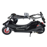 Foldable 250W Brush Motor E-Bicycle com bateria de ácido-chumbo (MES-300)