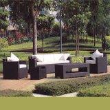 Rattan esterno della mobilia del giardino di nuovo stile semplice di disegno/insieme di vimini del sofà della stanza di seduta