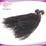 Cabelo 100% peruano do Virgin natural da cor que tece Curly Kinky
