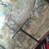 열대 다우림 녹색 대리석 석판, 호텔 훈장을%s 사막 오아시스 디자인