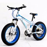Populäres Fahrrad-fettes Fahrrad-Gebirgsfahrrad des Schnee-4.0 (ly-a-6)