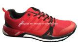 Спорт много цветов обувает тапки идущих ботинок