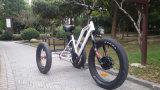 Rueda gorda Trike eléctrico del neumático 3 del nuevo diseño con el neumático gordo