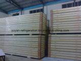 Gefriermaschine-Panel mit guter Qualität für Verkauf