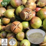 Saponina detersiva naturale 60%-98% del tè dell'estratto del seme della camelia