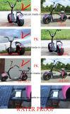Motorino elettrico di vendita di mobilità delle 2016 migliore rotelle potenti di 1000W 60V Citycoco 2