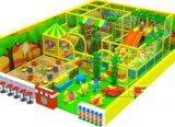 Het Huis van het Stuk speelgoed van Mcdonald met Norm ASTM