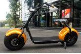 2017 motorino di 1000W Woqu X1 Citycoco Scrooser con Bluetooth