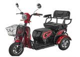 娯楽屋外48V350W熱い販売の電気三輪車車