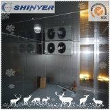 Sitio fresco de Shinyer/caminata en congelador